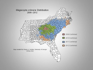Distribution of Kudzu Bug 8 May 2012